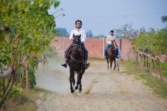Horse-Riding-Zacky-Farms-1