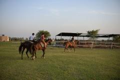 Horse-Riding-Zacky-Farms-11