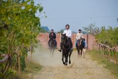 Horse-Riding-Zacky-Farms-15
