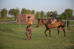 Horse-Riding-Zacky-Farms-2