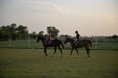 Horse-Riding-Zacky-Farms-4
