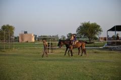 Horse-Riding-Zacky-Farms-5
