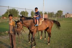 Horse-Riding-Zacky-Farms-7