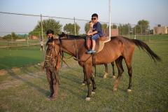 Horse-Riding-Zacky-Farms-8