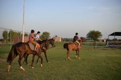 Horse-Riding-Zacky-Farms-9